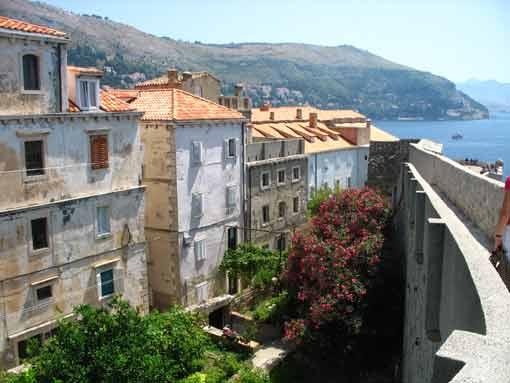 Dubrovnik - ogrody z murów.
